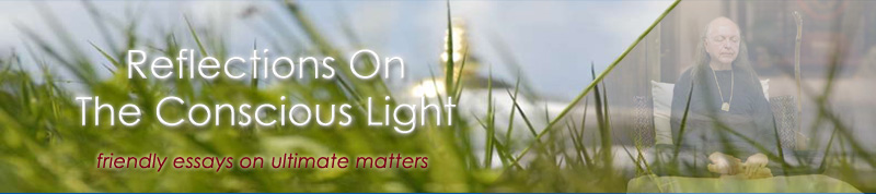Reflections On The Conscious Light